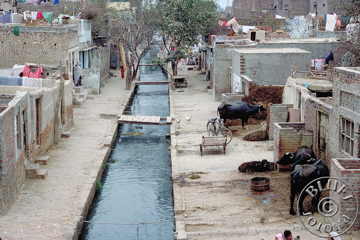 Pakistan - Lahore, scène de rue