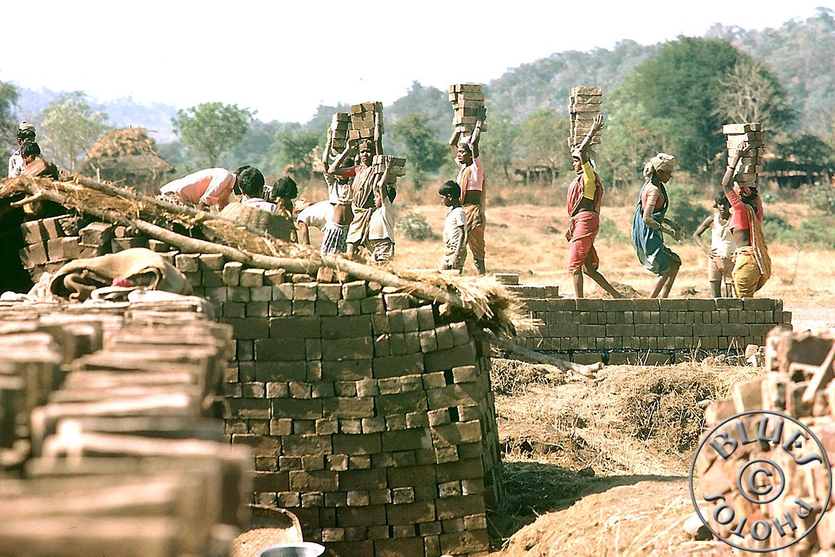 Rajasthan - transport de briques sur tête !