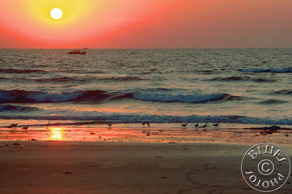 Goa - Coucher de soleil