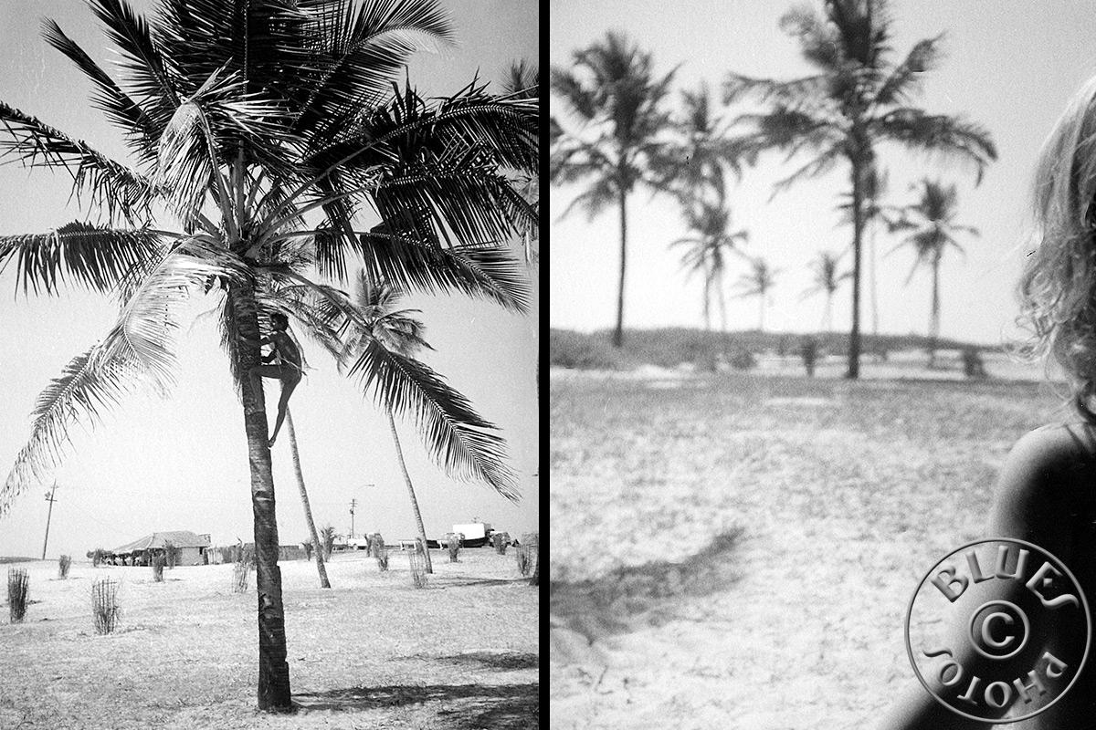 Goa - Julie et les palmiers