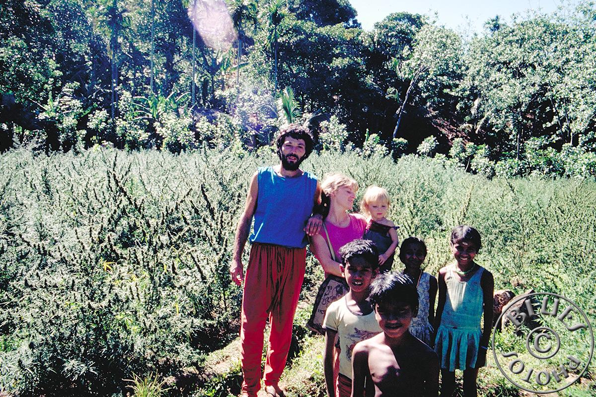 Kerala, visite d'un clutivateur de poivre et d'herbe (Ganja)